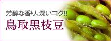 芳醇な香り、深いコク!! 鳥取黒枝豆