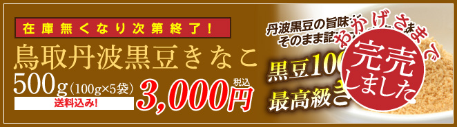 鳥取丹波黒豆きなこ 在庫無くなり次第終了!500g(100g×5袋)3,000円 送料無料!